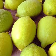 国産のレモンが入荷できるようになりました。