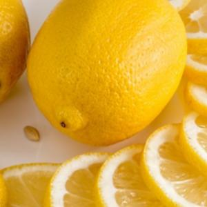 今が旬。国産レモン